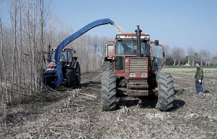 biomass-main-image.jpg