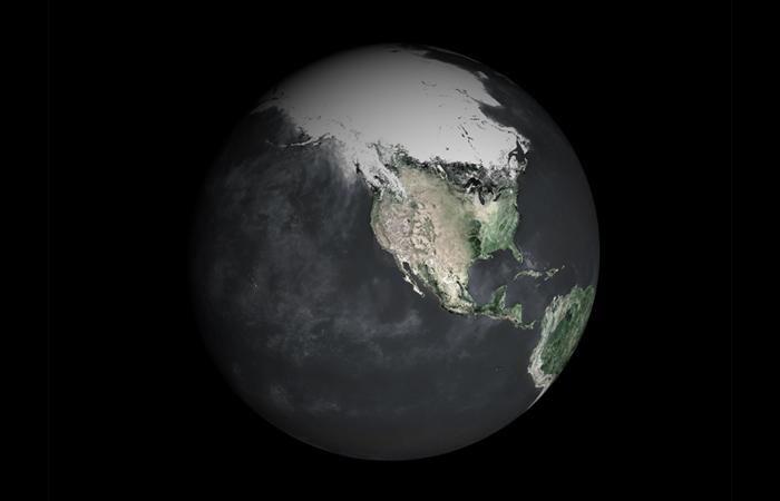 ecology-main.jpg