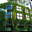 vertical-gardens-of-the-musee-du-quai-branly-in-paris