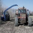 biomass-main-image